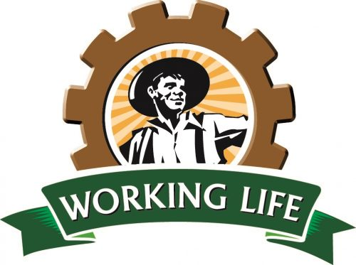 South West Rail and Heritage Centre is a proud member of the Working Life Trail